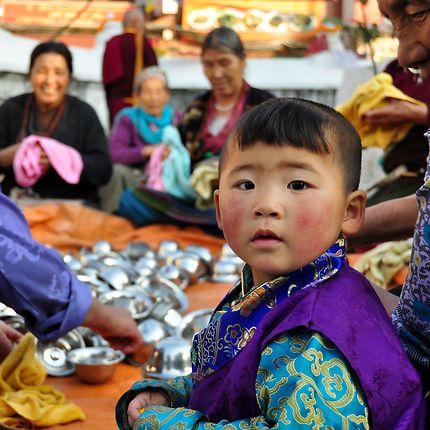 Petit népalais