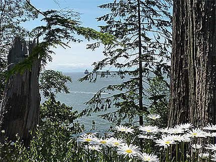 Vue sur Horseshoe Bay, depuis le sentier bordant Stanley Park