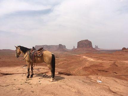 Sublimissime vue de Monument Valley, l'intrépide !