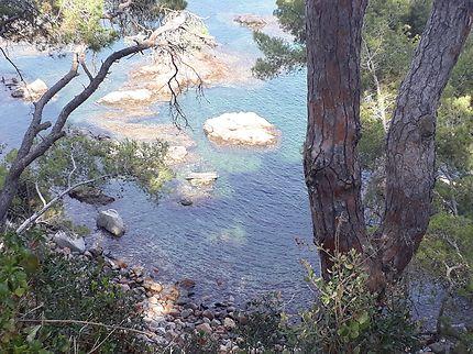 Cala entre Llafranc et Calella de Palafrugell