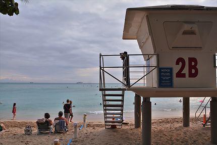 Summer In Waikiki