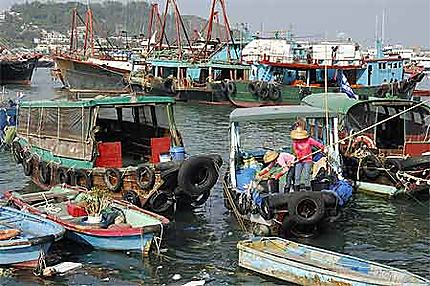 Nettoyage du port
