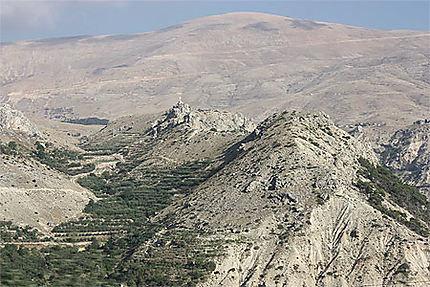 Paysage du Mont Liban