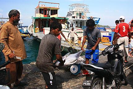 Marché de Malé