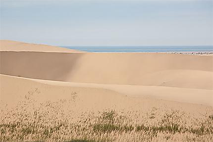 Les dunes et l'océan