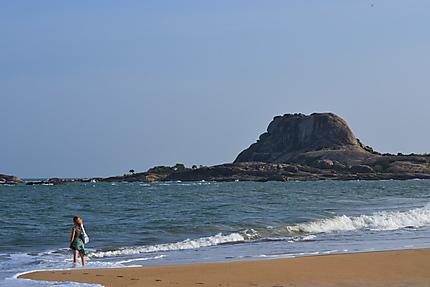 La perle de l'océan indien... Le Sri-Lanka
