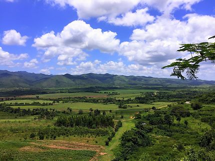 La vallée de los Ingenios à Cuba