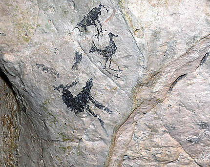 Dessins rupestres