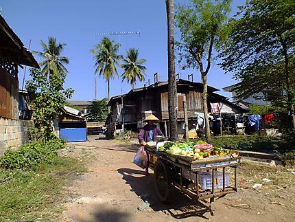 Dongpalane