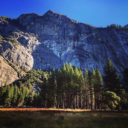 Le long des routes de Yosemite