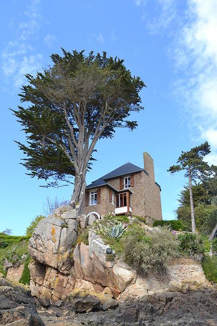 Maison sur le port de l'île de Bréhat