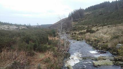 Wicklow way en Irlande