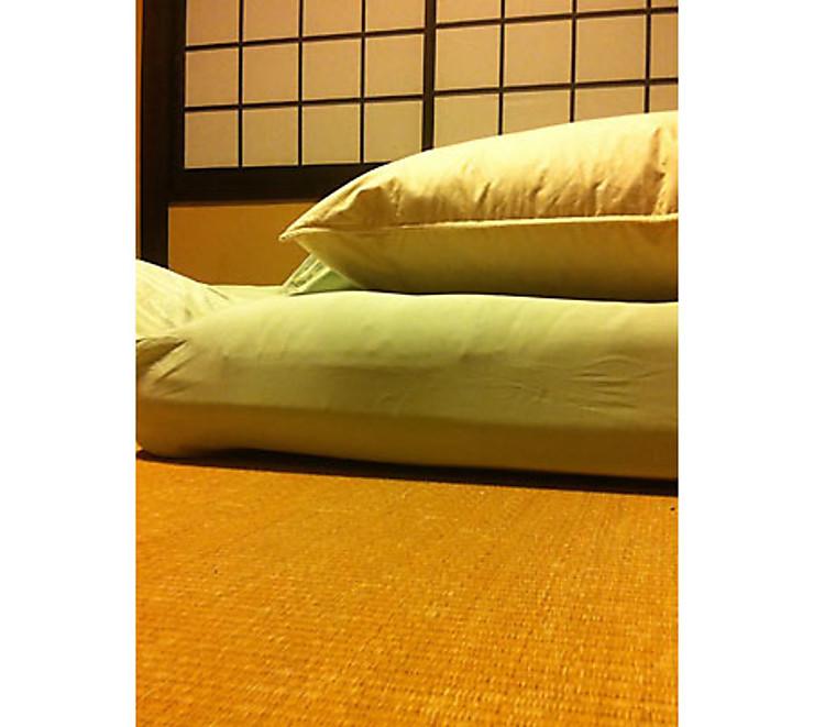 Une nuit dans un ryokan