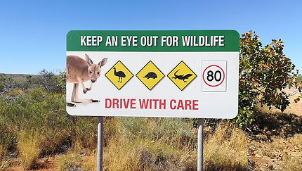 Préservons la faune... un bien inestimable