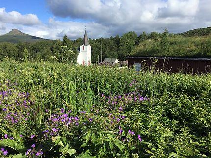 Bucolique à Bodø
