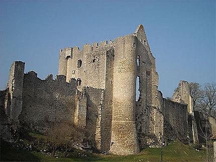 Chateau Angles sur l'Anglin