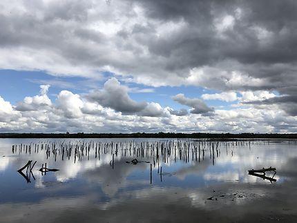 Reflets sur le bassin d'Arcachon