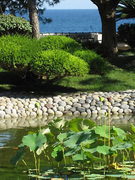 Jardin japonais plantes jardin japonais monte carlo for Jardin japonais monaco
