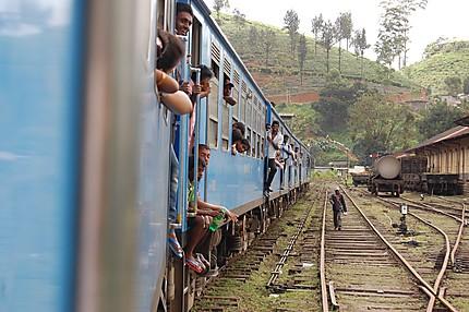 Trajet en train entre Hatton et Haputale