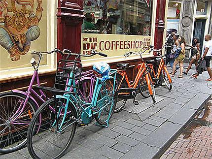 Dans les rue d'Amsterdam