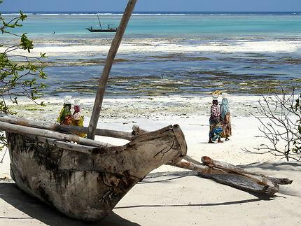 Plage sur l'île de Zanzibar