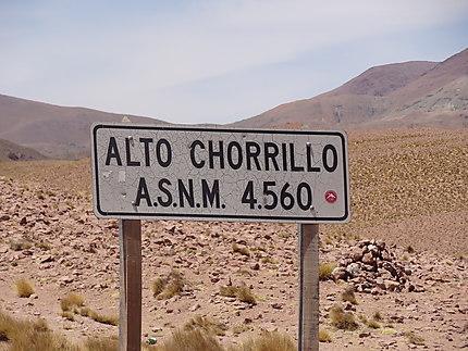 Alto Chorillo 4500m