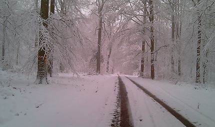 Route cachée sous la neige