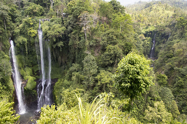 Sekumpul et Lemukih : Bali enchanté