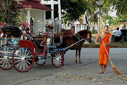 Calèche de Lampang
