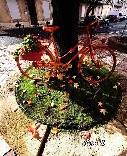 Les vélos d'automne d'Agen