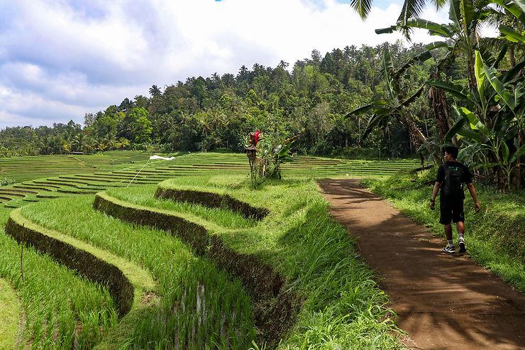 De vallées en rizières perdues et jusqu'au nirvana