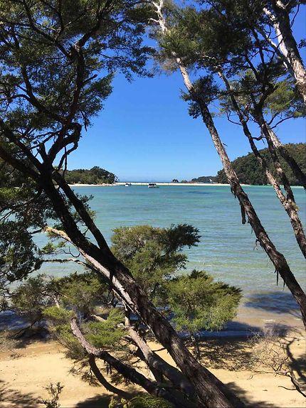 Parc Abel Tasman, Nouvelle-Zélande, plage