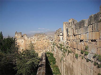 Complexe de Baalbek
