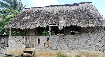 Habitat traditionnel des Indiens
