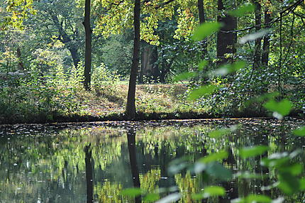 Petit étang dans le jardin du château