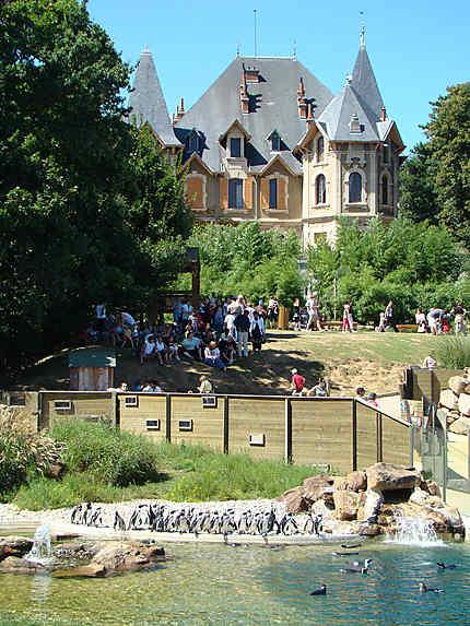 Château de Peaugres - au coeur du safari
