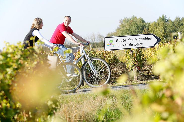 Les routes des vins de Loire