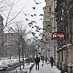 Rue de Saint Petersbourg