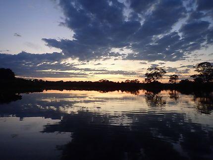 L'aube au Pantanal