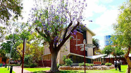 Eglise, Alice Springs