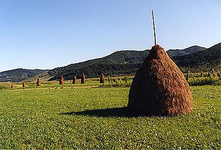 Région de Maramures