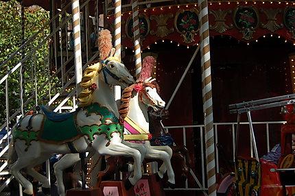 Tourne, tourne, carrousel !