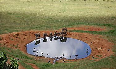 Parc de Tsavo