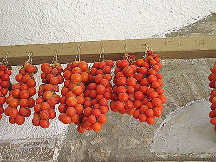 Tomates de Chios