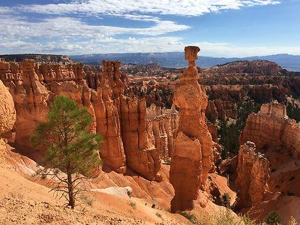 Hoodoos - les cheminées de Bryce Canyon