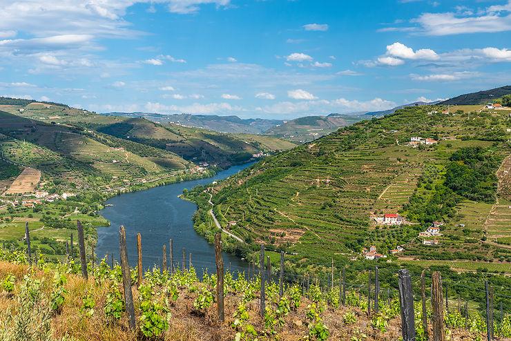 Vallée du Haut-Douro : sur les traces du porto