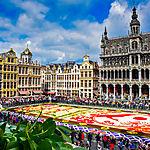 Tapis de fleurs sur la Grand-Place