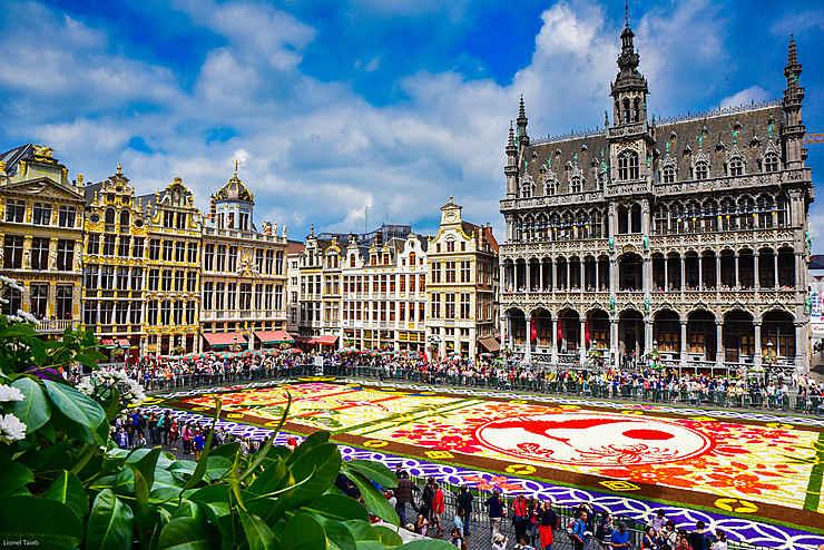 Tapis de fleurs sur la Grand-Place, Bruxelles