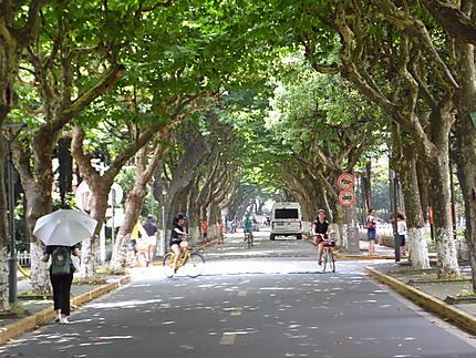 Rue de l'université Fudan