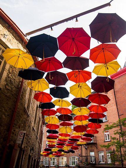 Les parapluies de Qué bec !
